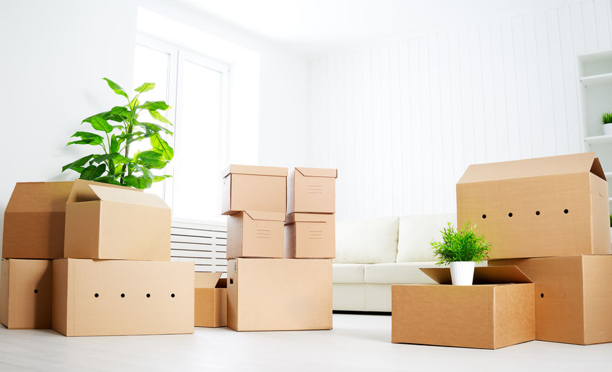 Avoid these 7 Mistakes While Moving