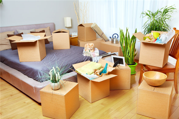 Should You Allow Someone Else to Do Your Packing When You Move?
